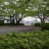 「一週間フレンズ。」舞台探訪(聖地巡礼) 第6話 聖蹟桜ヶ丘いろは坂桜公園