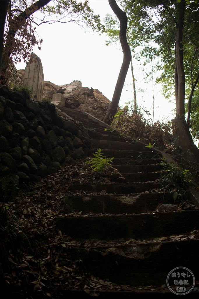 岩清水14