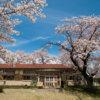 のんのんびよりの舞台、満開の桜舞う「小川町立小川小学校 下里分校」へ