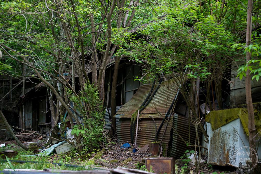商店の裏手にある廃住宅