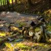 熊の爪痕が残る廃集落、埼玉県秩父市「冠岩集落」