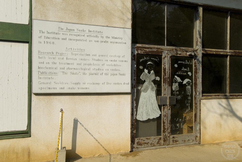 ヘビ資料館に併設された土産屋の廃墟
