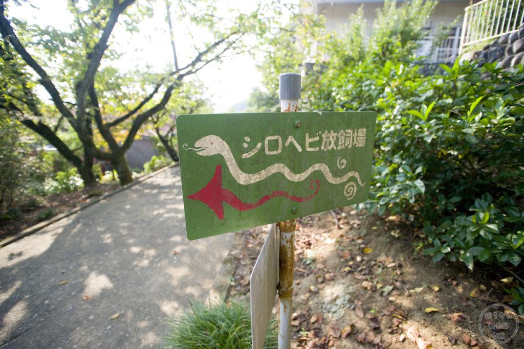 シロヘビ放飼場の看板