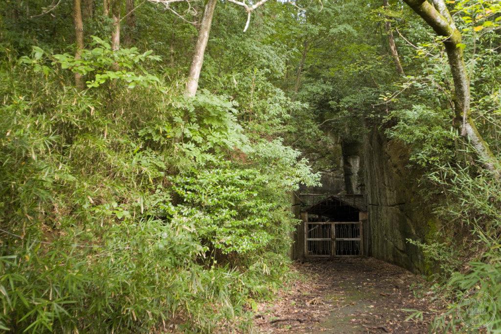 噂の廃洞窟を発見