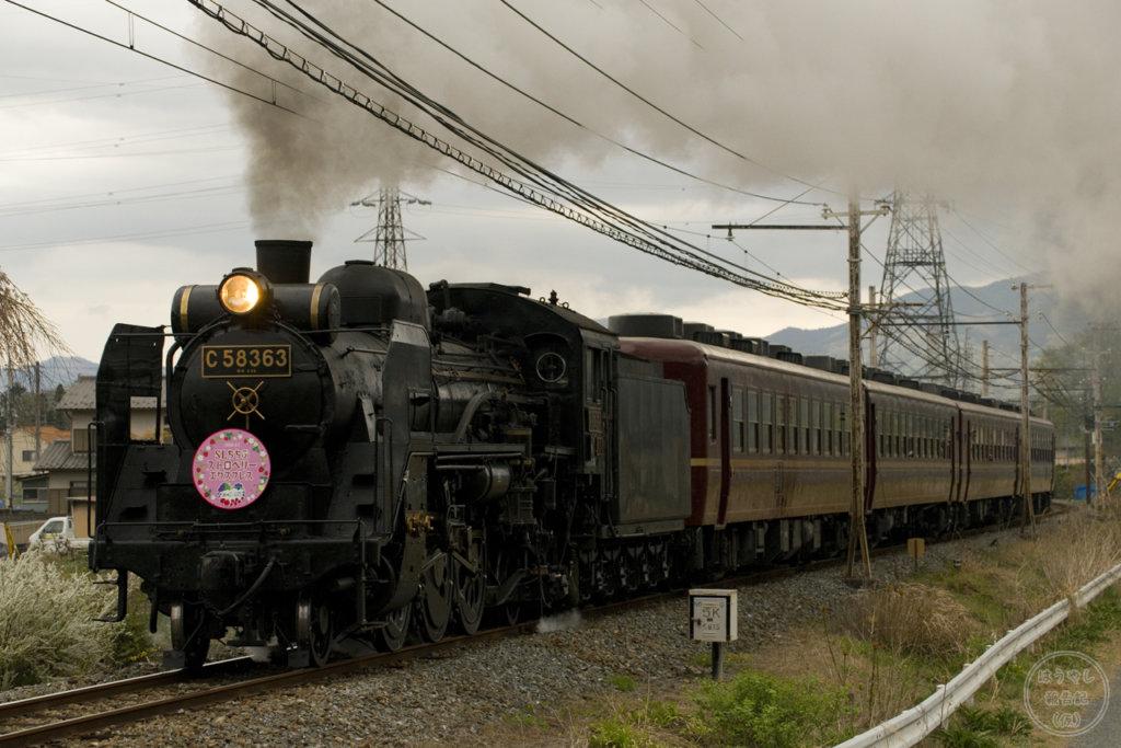 5001列車「SLパレオエクスプレス」C58-363+12系客車4両(撮影地:浦山口~武州中川)