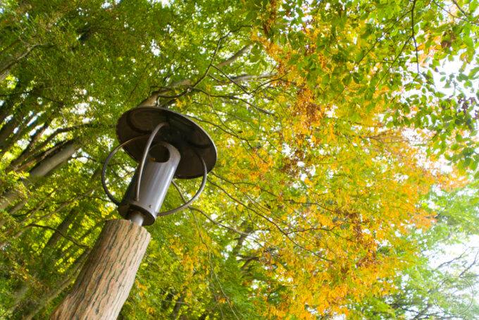 トーベ・ヤンソンあけぼの子どもの森公園 街灯