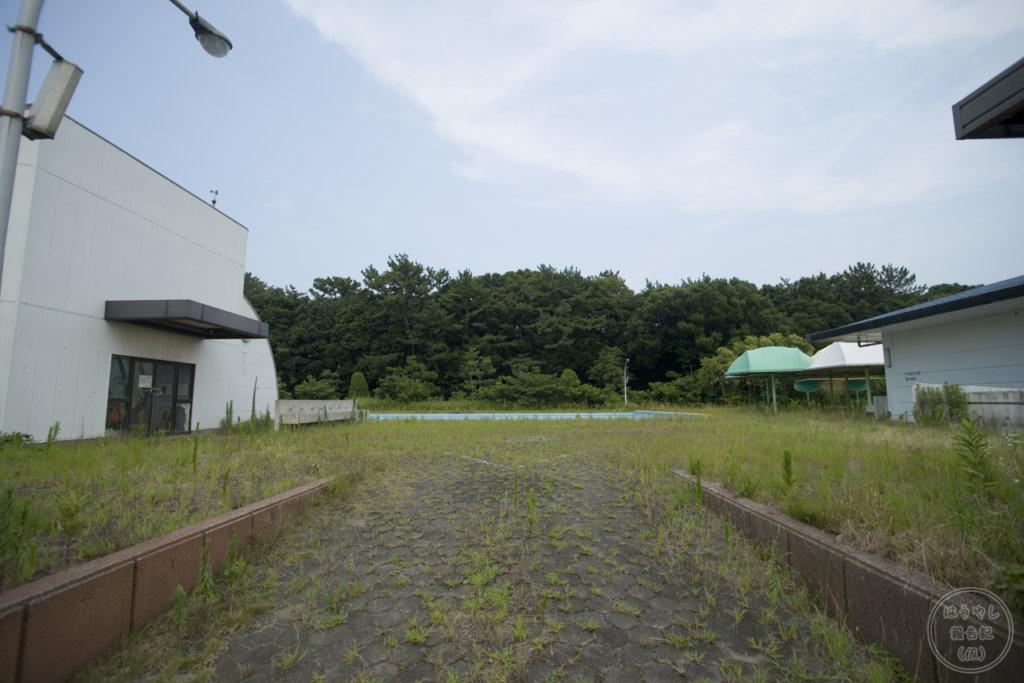 草が生え延びるプールサイド