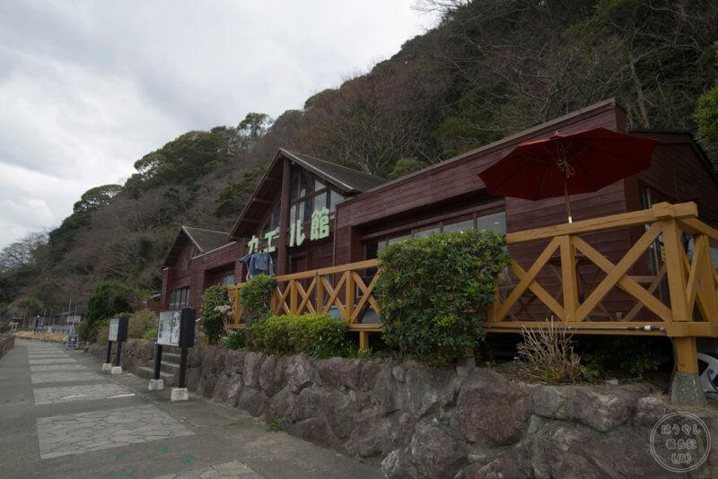 日本で一番多くのカエルを展示している「カエル館」