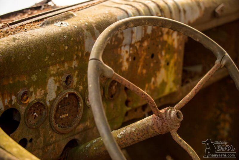 白沢峠の廃トラック(廃ダッチ)・運転席の計器