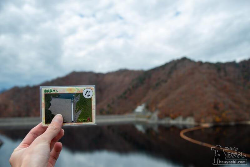 ぐんまダムかるた「奈良俣ダム」