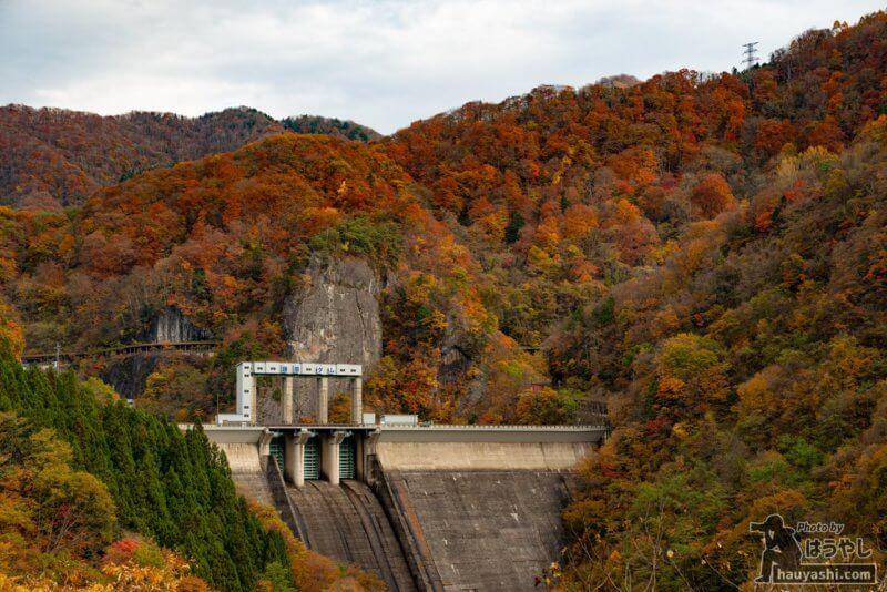 藤原ダム・藤原湖の紅葉(2020年11月7日)
